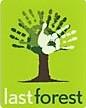 lastforest